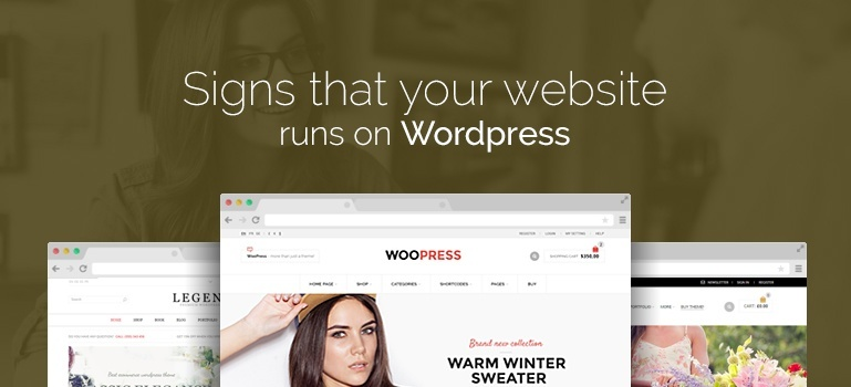 Signs That Your Website Runs on Wordpress