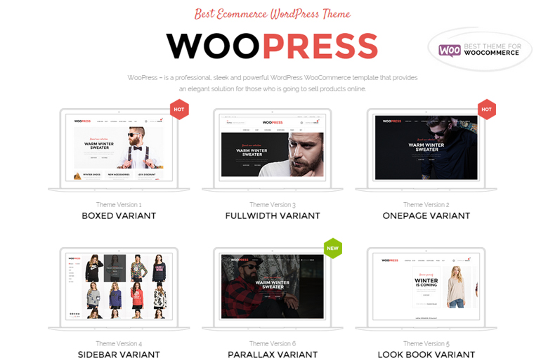 how to build ecommerce website wordpress bluehost