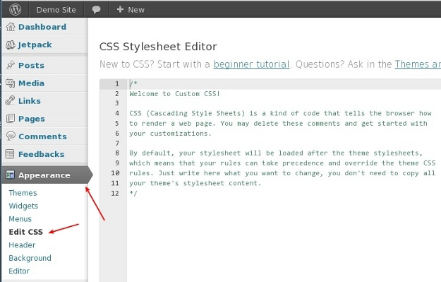 How to edit css styles in wordpress themes for How to edit wordpress templates